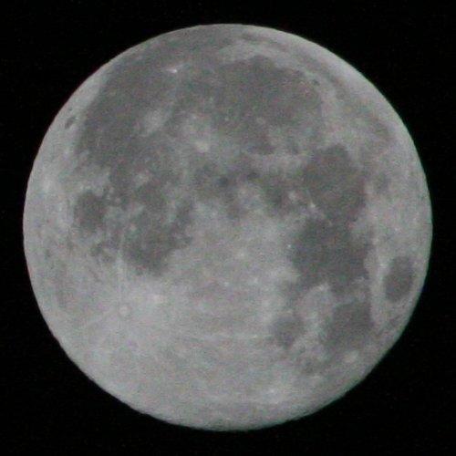 Mit der max. Verschlusszeit von 1/4000 bei ISO1600 (Canon EOS 350D) wird der Mond sehr dunkel abgelichtet, dafür ist beispielsweise das Strahlensystem um den Strahlenkrater (von Copernicus?) gut sichtbar